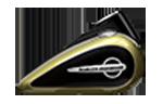 Motocykle Harley-Davidson Bratislava Softail Slim farba Olive Gold / Black Tempest